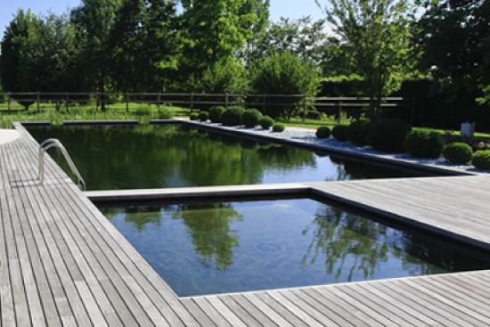 esempio di biolaghetto in pieno stile piscina